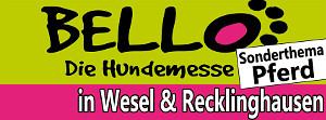 2014 Wesel